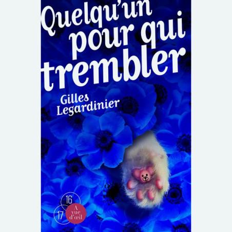 Livre gros caractères - Quelqu'un pour qui trembler - Legardinier Gilles