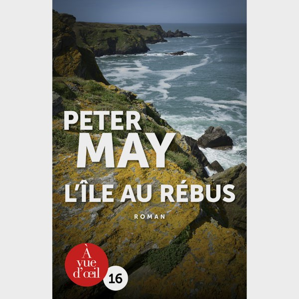 Livre gros caractères - Assassins sans visages 4 - L'île au rébus - Peter May