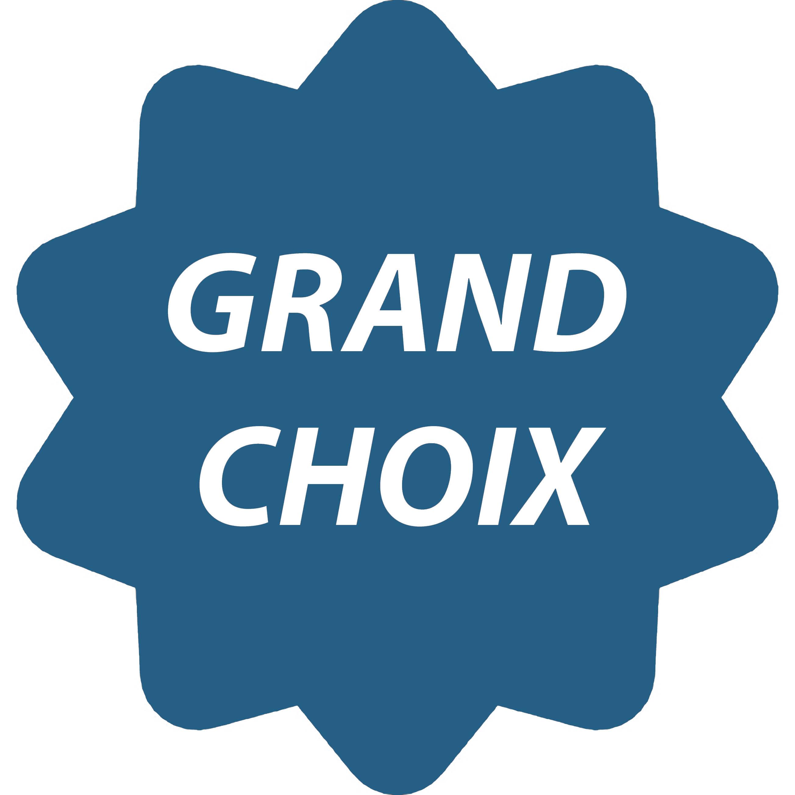Le plus grand choix en France de montre parlante